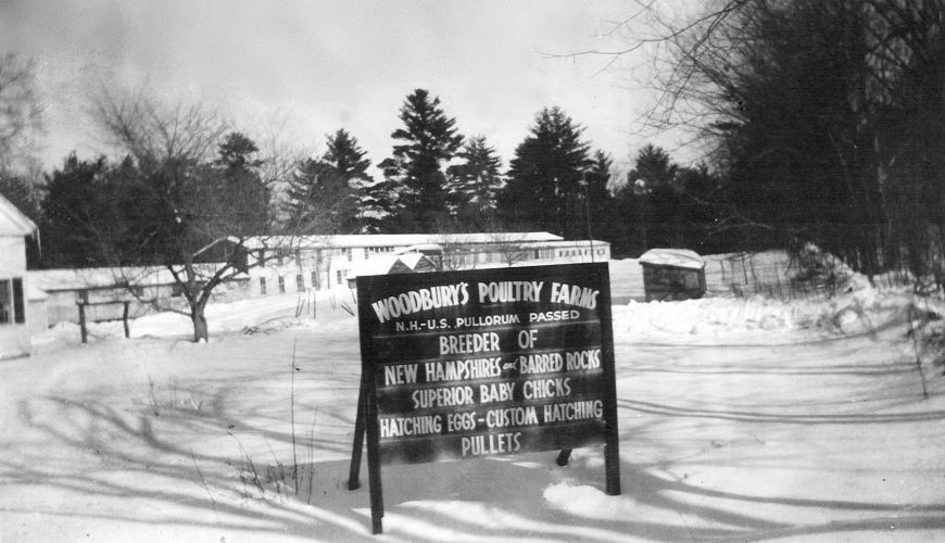 WoodburysPoultryFarms1941